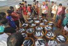 Photo of Tolak PP Nomor 85/2021 Nelayan dan Pengusaha Ikan Kota Probolinggo Demo